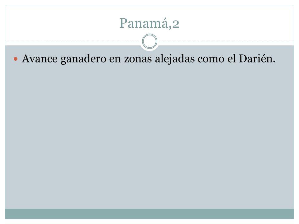 Panamá,2 Avance ganadero en zonas alejadas como el Darién.