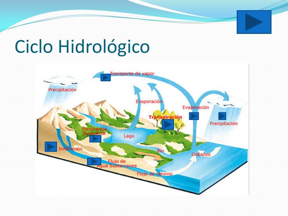 Ciclo Hidrológico Precipitacion: caida de agua solida o liquida por la condensacion del vapor sobre la superficie terrestre.