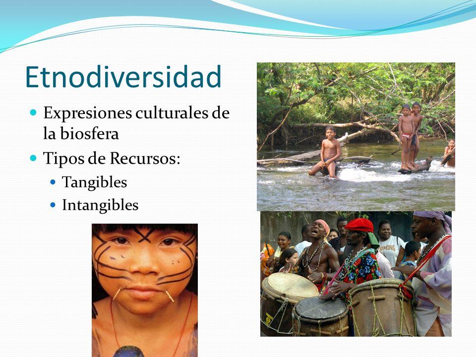 Etnodiversidad Expresiones culturales de la biosfera