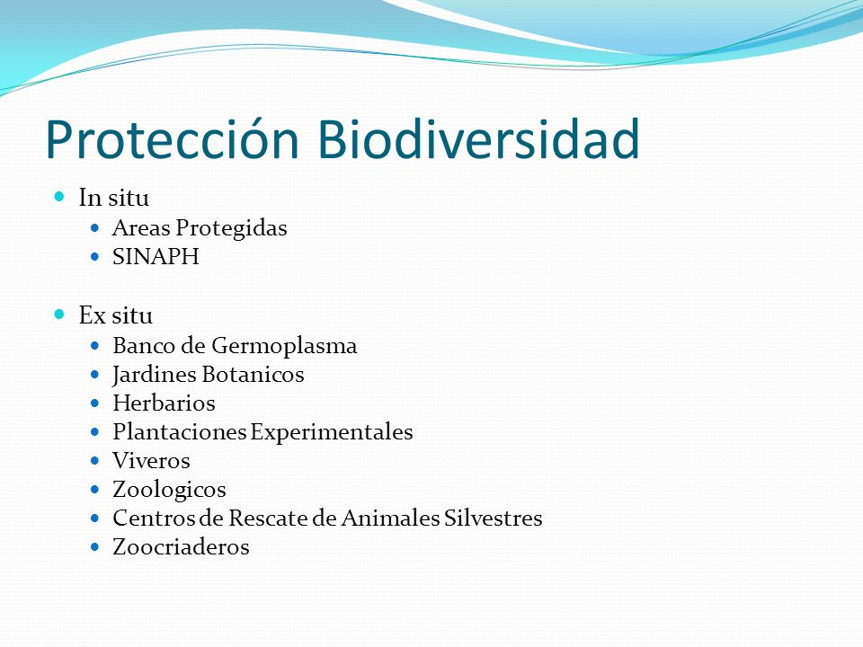 Protección Biodiversidad