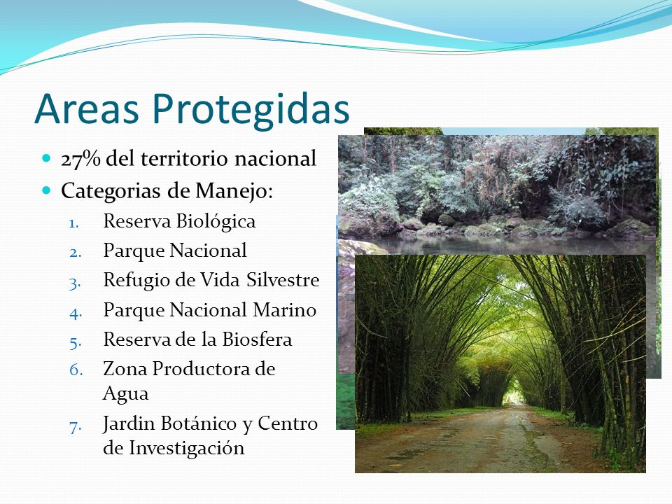 Areas Protegidas 27% del territorio nacional Categorias de Manejo: