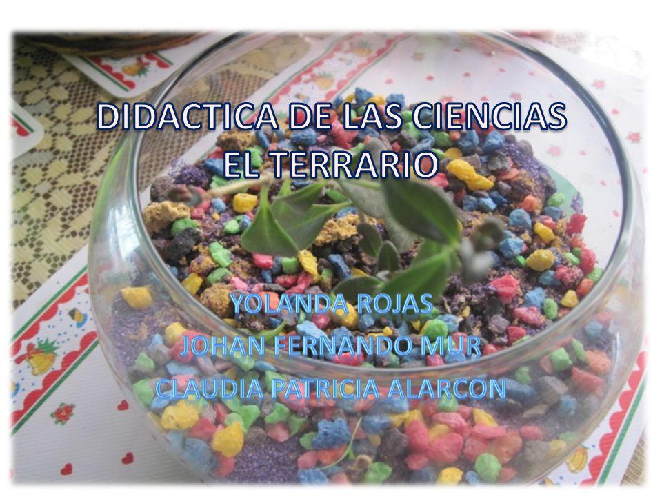 DIDACTICA DE LAS CIENCIAS EL TERRARIO