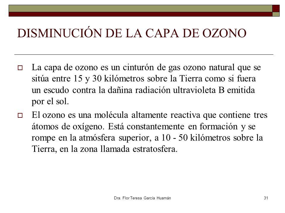 DISMINUCIÓN DE LA CAPA DE OZONO