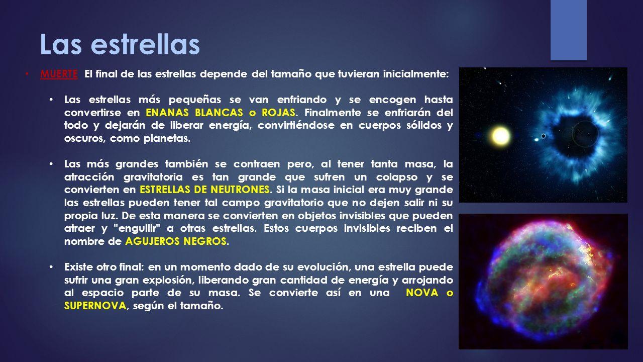 Las estrellas MUERTE El final de las estrellas depende del tamaño que tuvieran inicialmente: