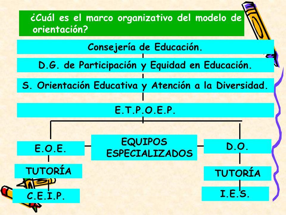 ¿Cuál es el marco organizativo del modelo de orientación