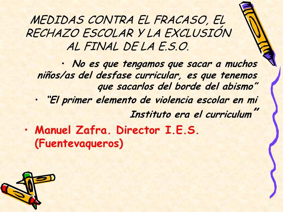 Manuel Zafra. Director I.E.S. (Fuentevaqueros)
