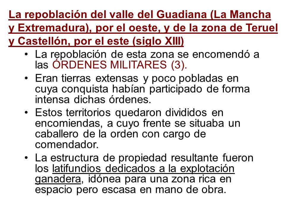 La repoblación del valle del Guadiana (La Mancha y Extremadura), por el oeste, y de la zona de Teruel y Castellón, por el este (siglo XIII)