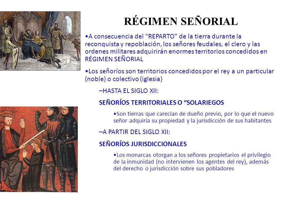 RÉGIMEN SEÑORIAL