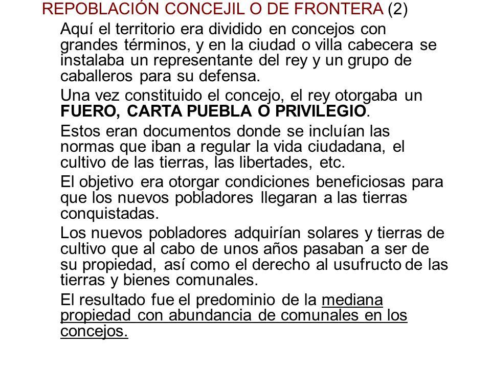 REPOBLACIÓN CONCEJIL O DE FRONTERA (2)