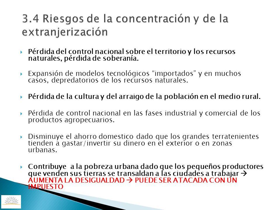 3.4 Riesgos de la concentración y de la extranjerización