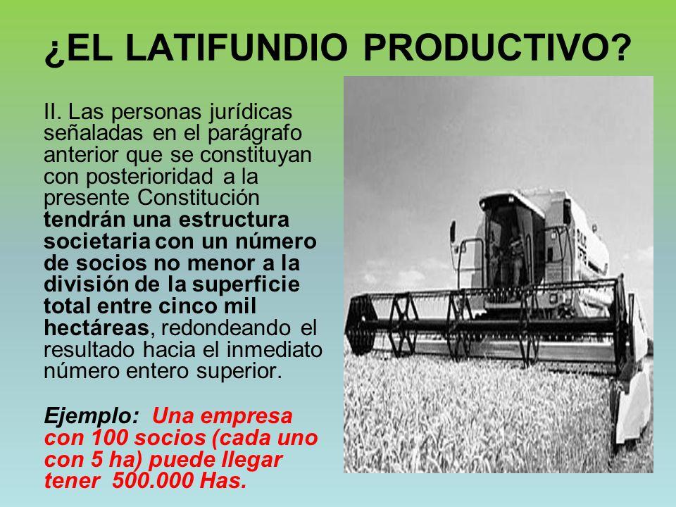¿EL LATIFUNDIO PRODUCTIVO