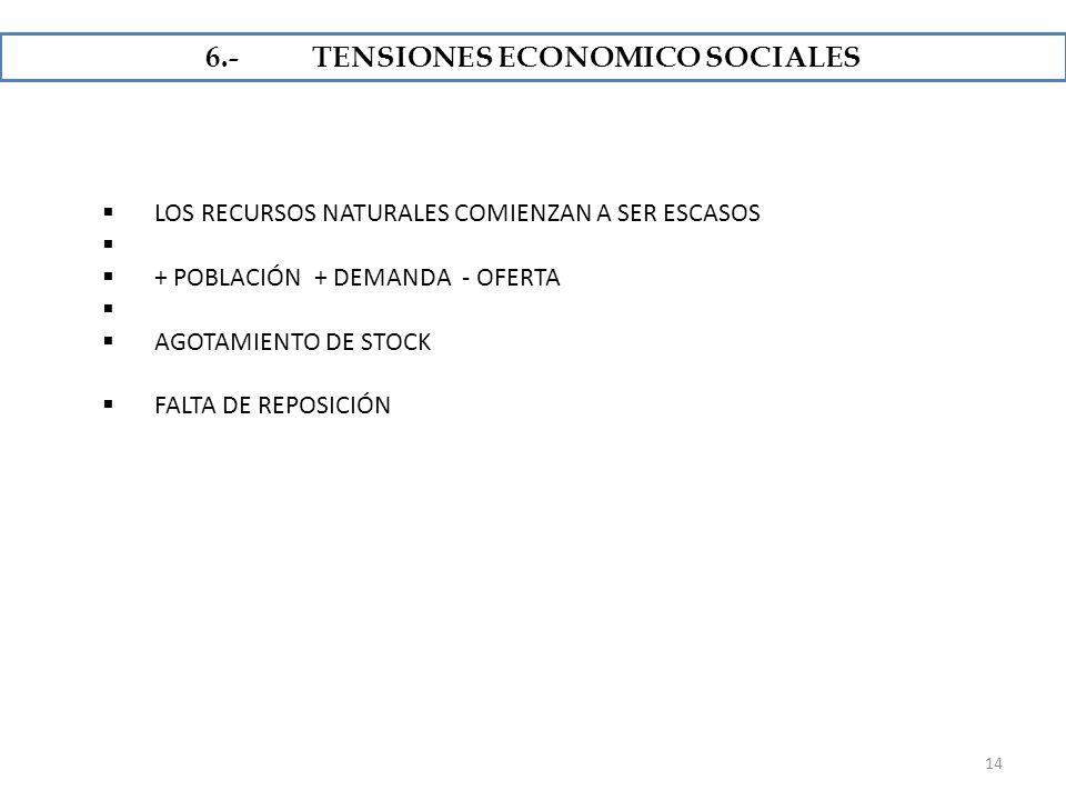 6.- TENSIONES ECONOMICO SOCIALES