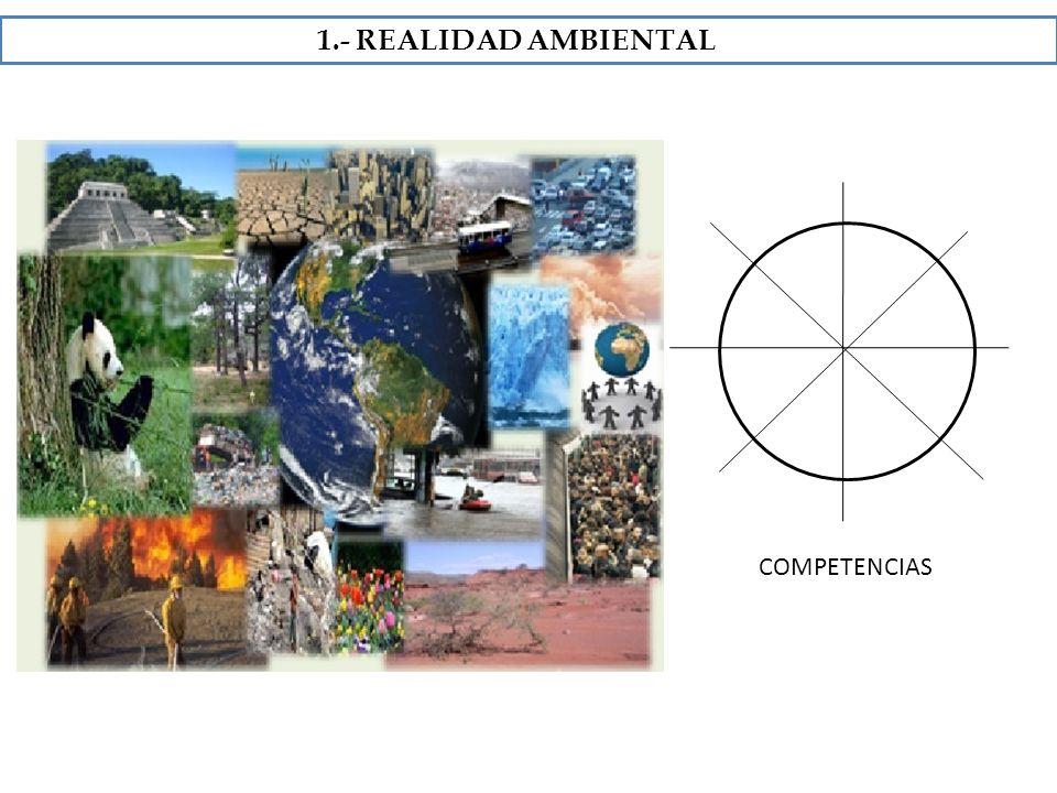 1.- REALIDAD AMBIENTAL COMPETENCIAS