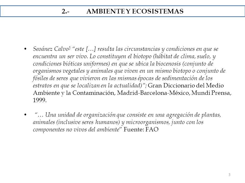 2.- AMBIENTE Y ECOSISTEMAS