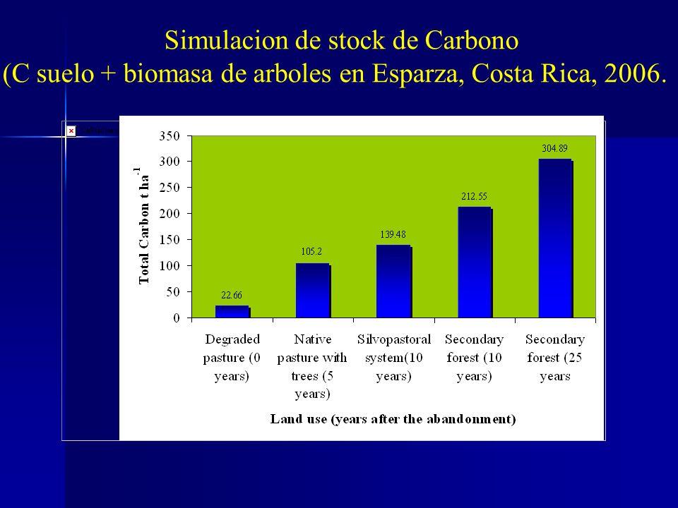 Simulacion de stock de Carbono