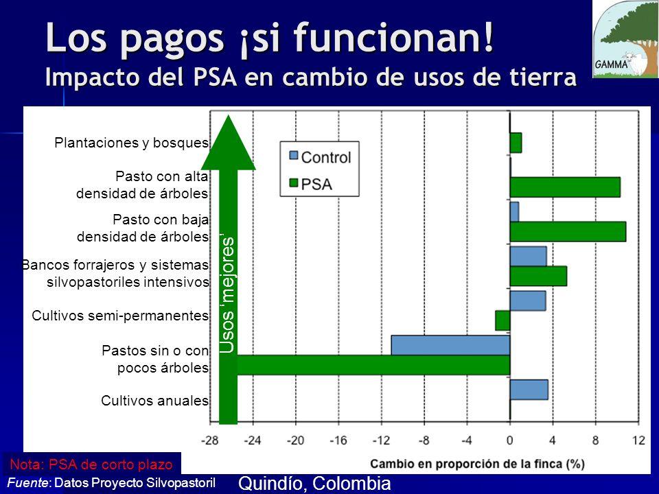 Los pagos ¡si funcionan! Impacto del PSA en cambio de usos de tierra