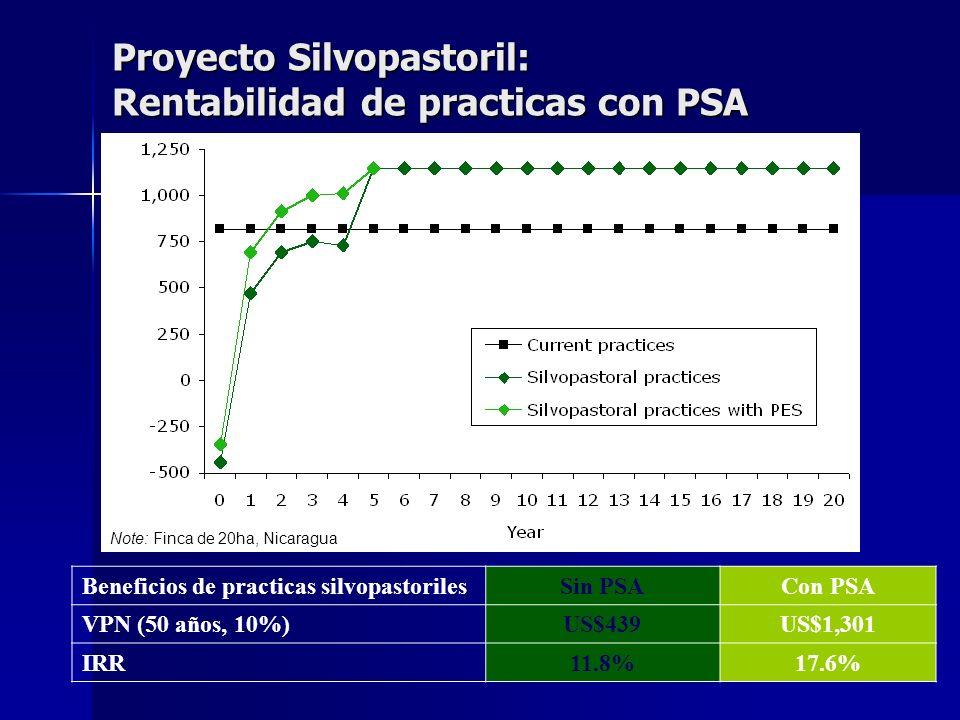 Proyecto Silvopastoril: Rentabilidad de practicas con PSA