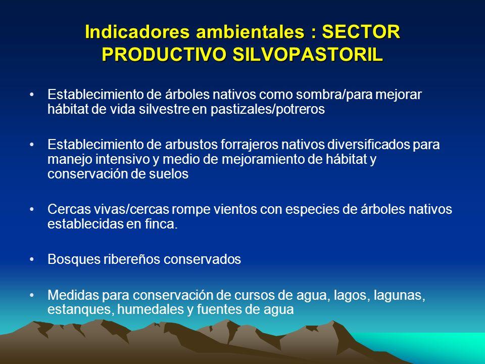 Indicadores ambientales : SECTOR PRODUCTIVO SILVOPASTORIL