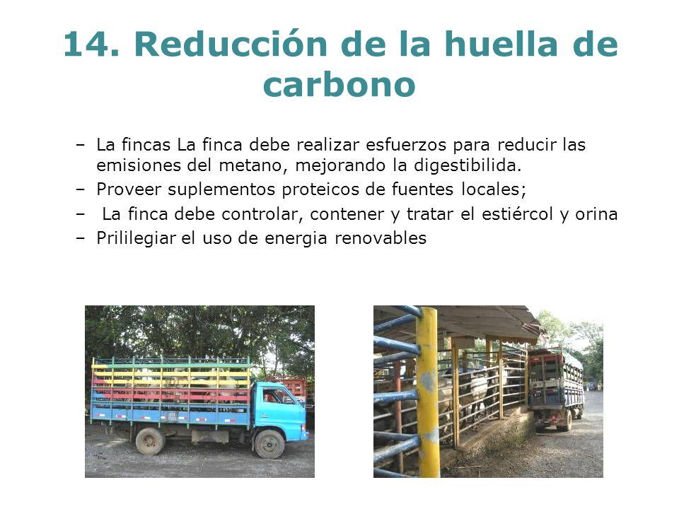 14. Reducción de la huella de carbono