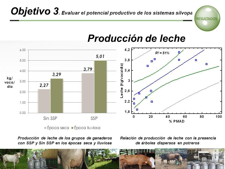 Objetivo 3. Evaluar el potencial productivo de los sistemas silvopastoriles…