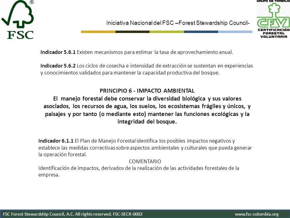 PRINCIPIO 6 - IMPACTO AMBIENTAL