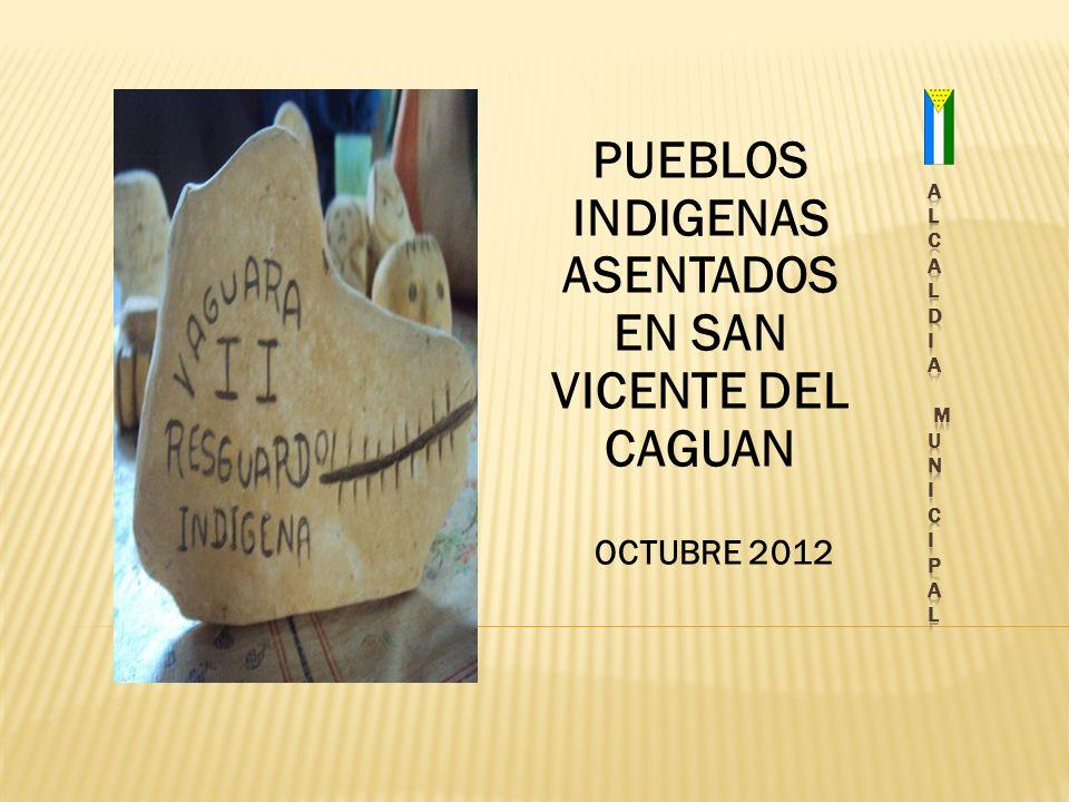PUEBLOS INDIGENAS ASENTADOS EN SAN VICENTE DEL CAGUAN OCTUBRE 2012