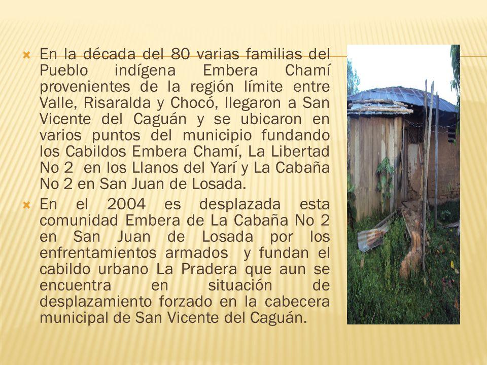 En la década del 80 varias familias del Pueblo indígena Embera Chamí provenientes de la región límite entre Valle, Risaralda y Chocó, llegaron a San Vicente del Caguán y se ubicaron en varios puntos del municipio fundando los Cabildos Embera Chamí, La Libertad No 2 en los Llanos del Yarí y La Cabaña No 2 en San Juan de Losada.