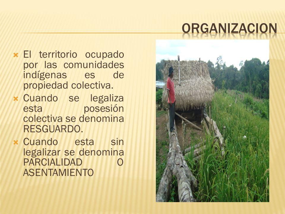ORGANIZACION El territorio ocupado por las comunidades indígenas es de propiedad colectiva.