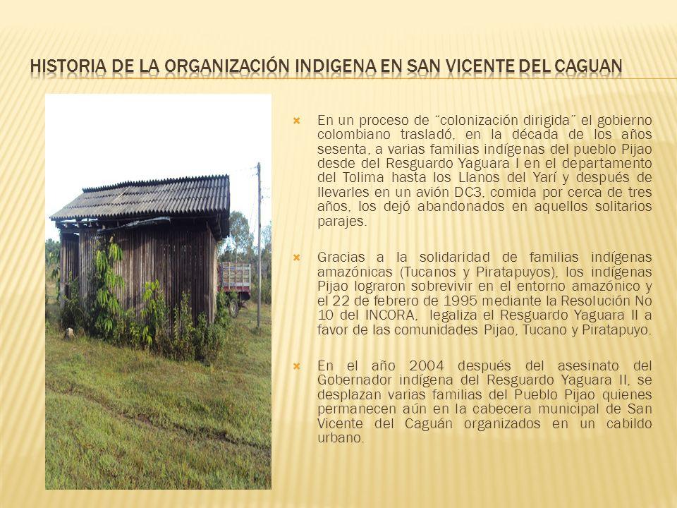 HISTORIA DE LA ORGANIZACIÓN INDIGENA EN SAN VICENTE DEL CAGUAN