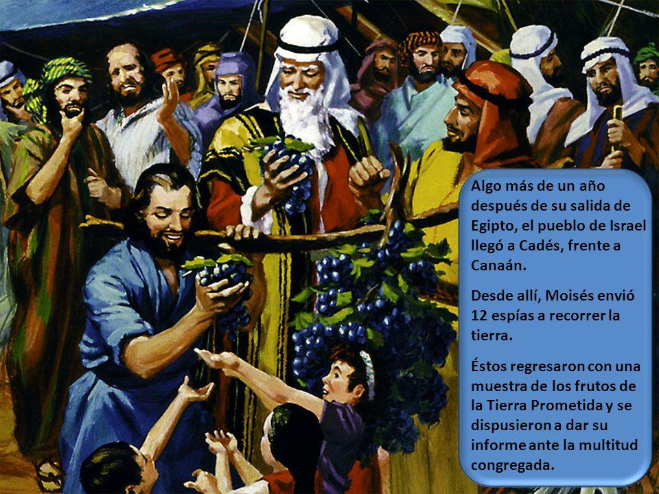 Algo más de un año después de su salida de Egipto, el pueblo de Israel llegó a Cadés, frente a Canaán.