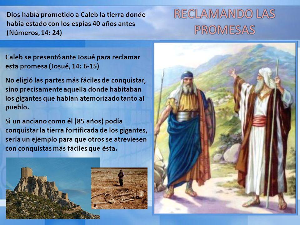 RECLAMANDO LAS PROMESAS