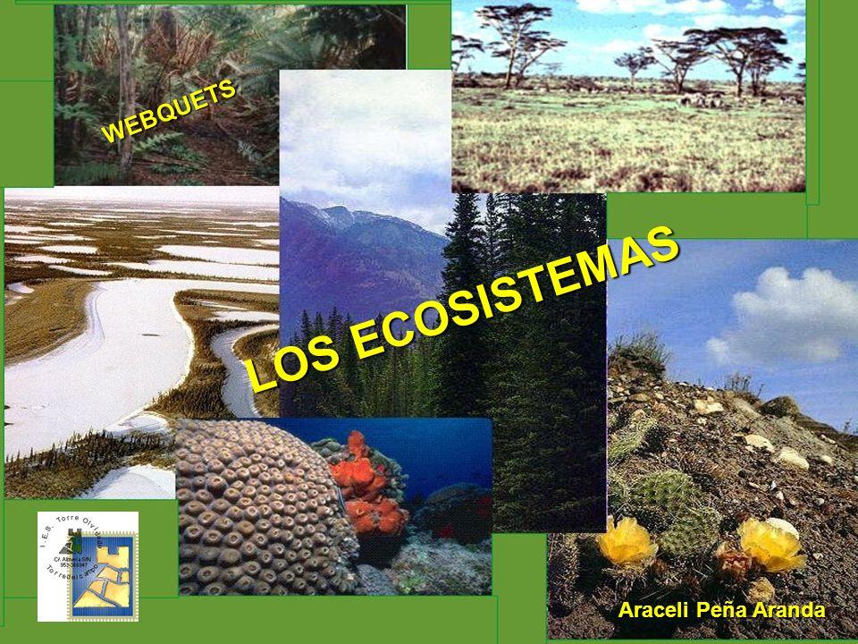 LOS ECOSISTEMAS Araceli Peña Aranda WEBQUETS
