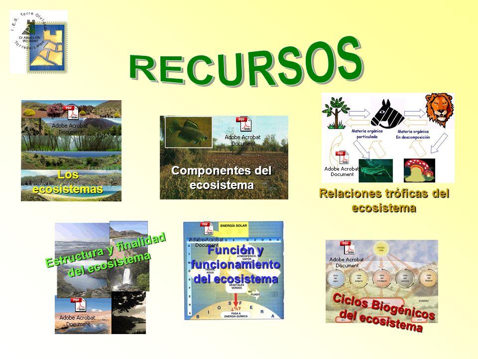 RECURSOS Componentes del ecosistema Los ecosistemas