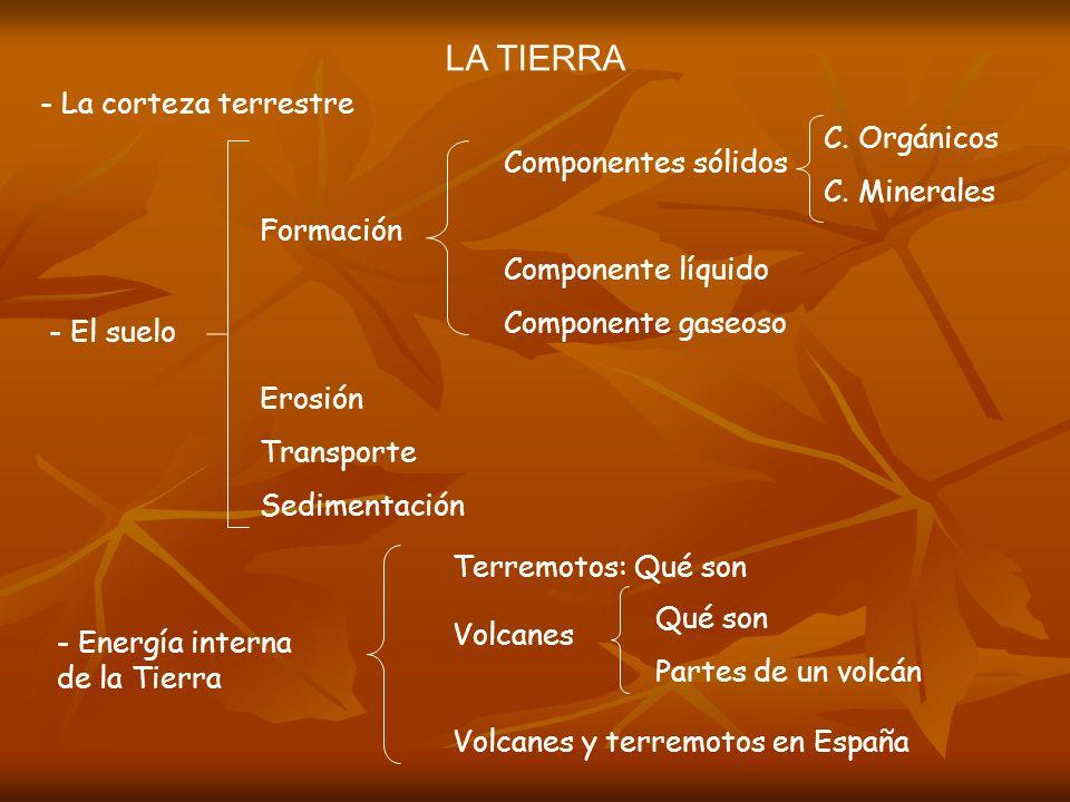 LA TIERRA - La corteza terrestre C. Orgánicos C. Minerales