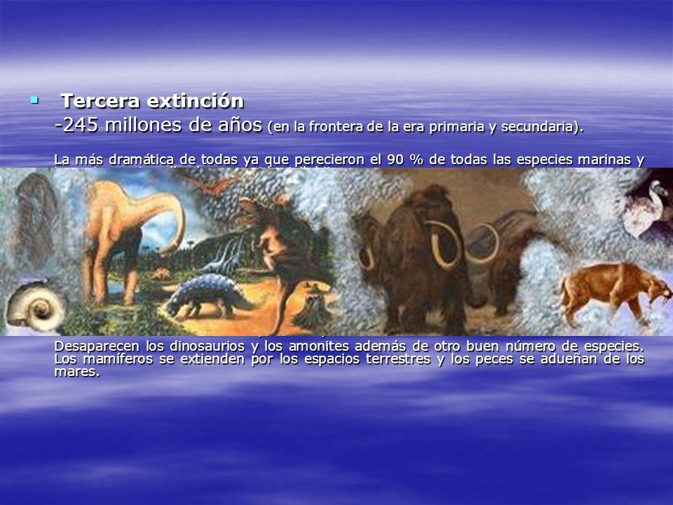 Tercera extinción Cuarta extinción Quinta extinción