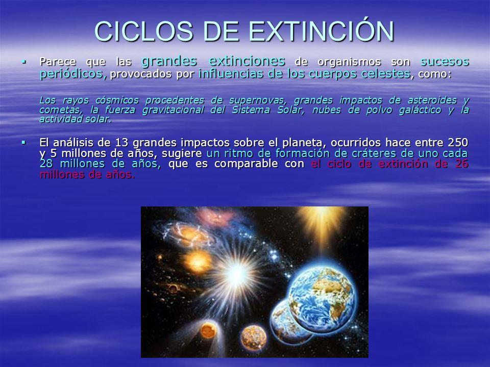 CICLOS DE EXTINCIÓN