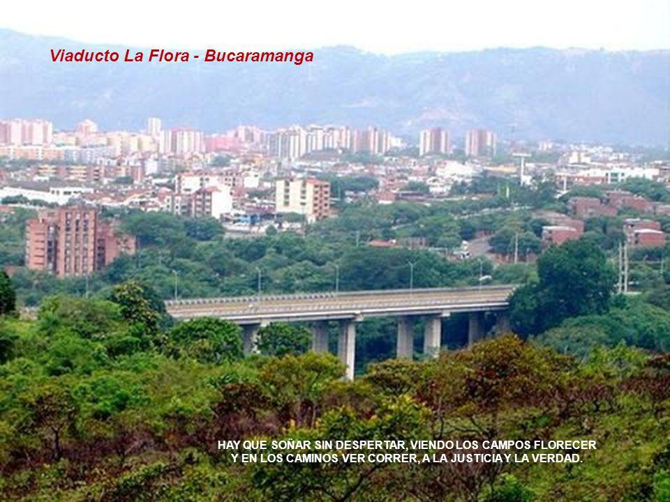 Viaducto La Flora - Bucaramanga