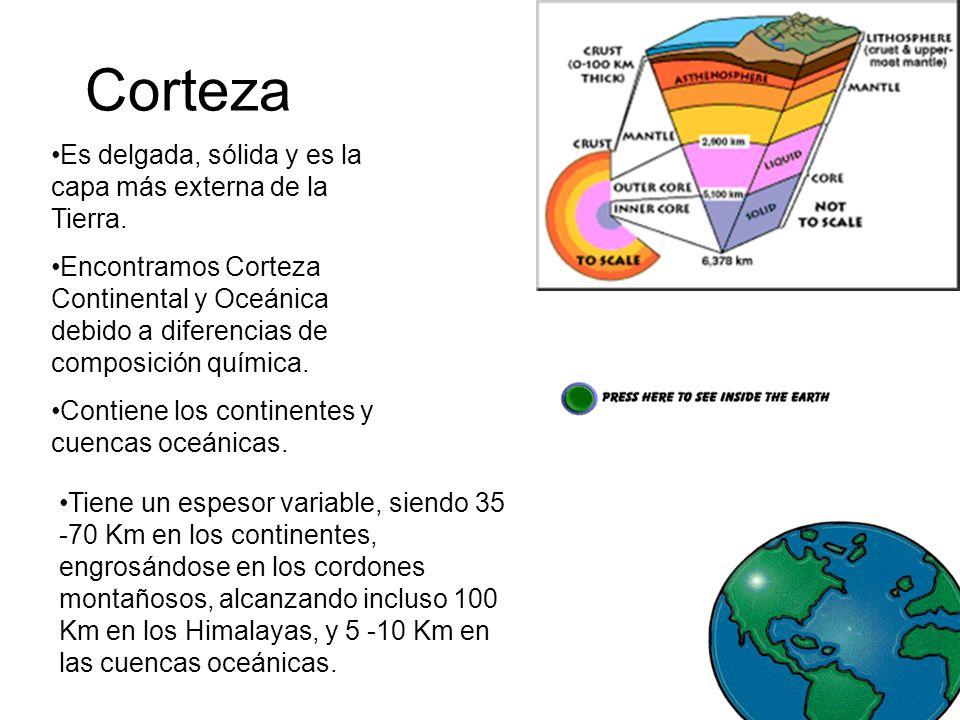 Corteza Es delgada, sólida y es la capa más externa de la Tierra.