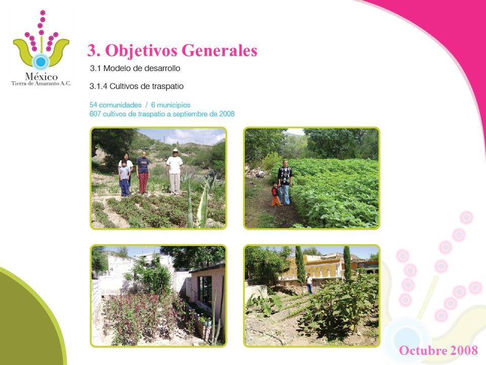 3. Objetivos Generales Octubre 2008