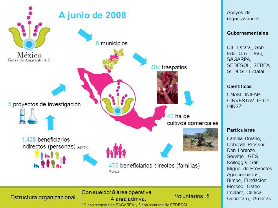 A junio de 2008 8 municipios 404 traspatios