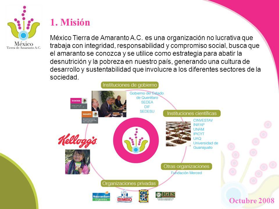 1. Misión