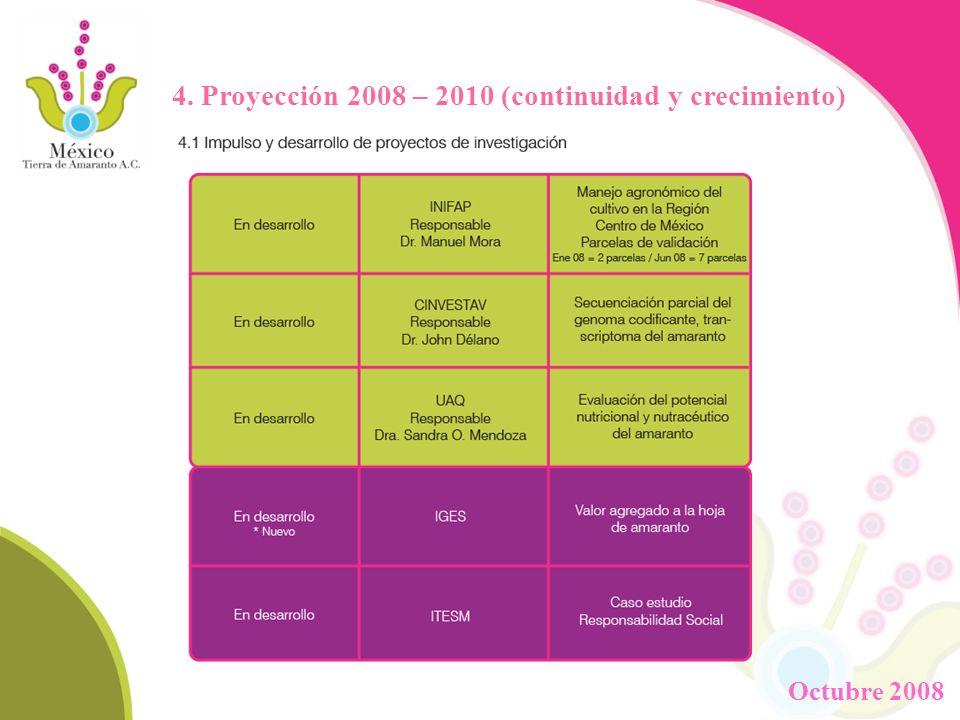 4. Proyección 2008 – 2010 (continuidad y crecimiento)