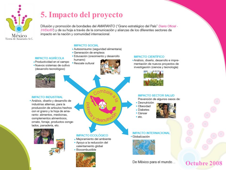 5. Impacto del proyecto Octubre 2008
