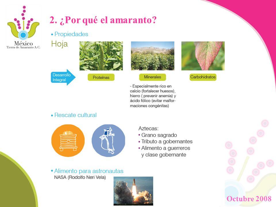 2. ¿Por qué el amaranto Octubre 2008