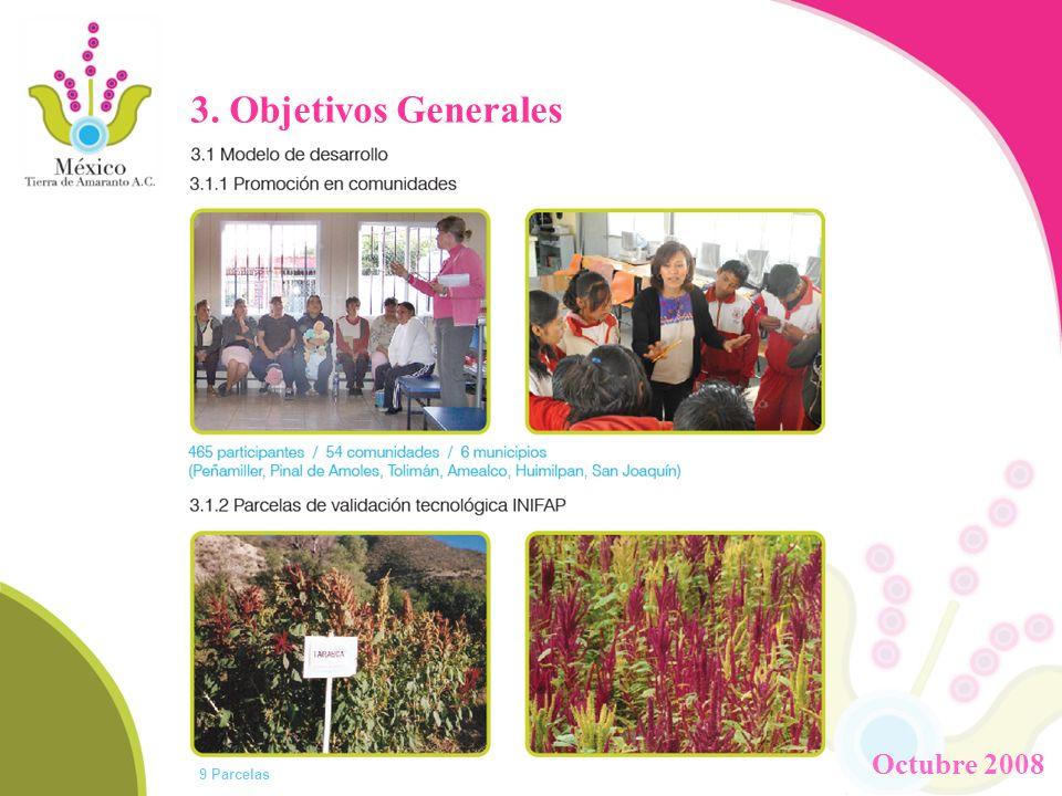 3. Objetivos Generales Octubre 2008 9 Parcelas