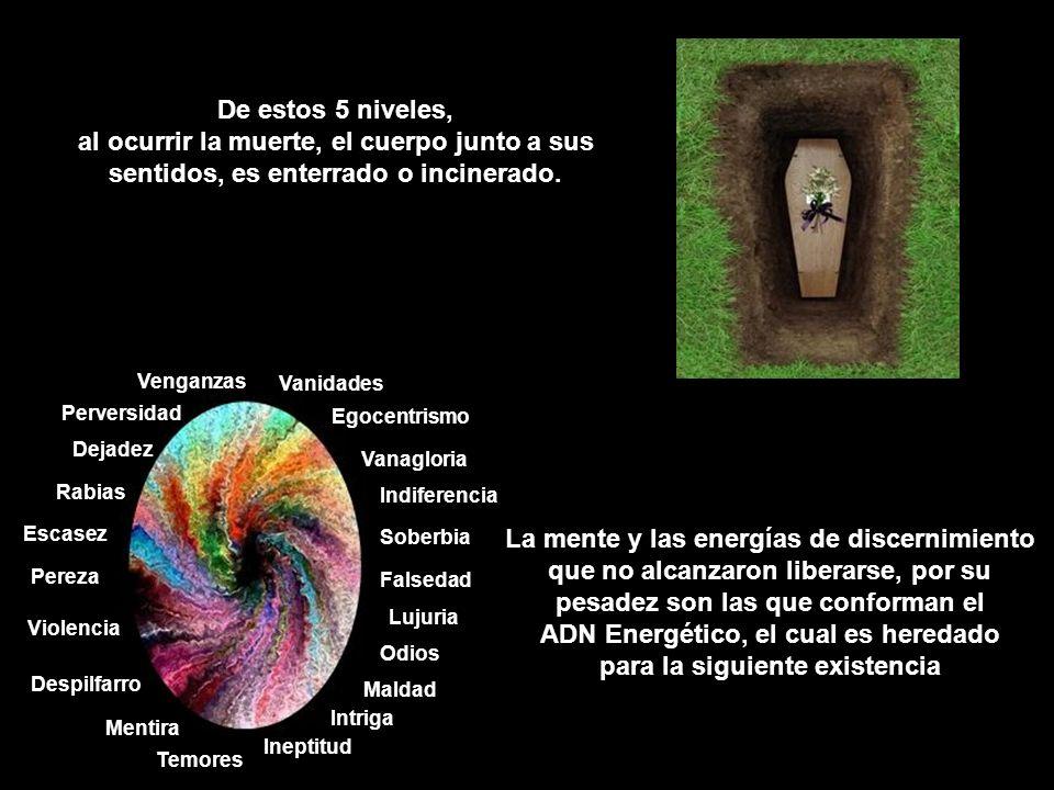 De estos 5 niveles, al ocurrir la muerte, el cuerpo junto a sus sentidos, es enterrado o incinerado.