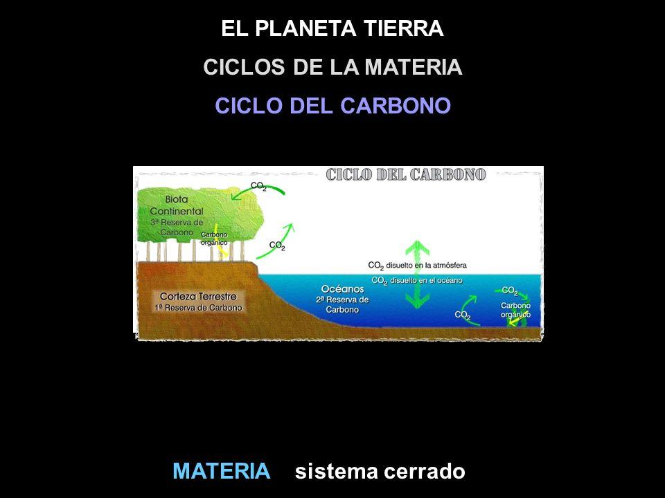 CICLOS DE LA MATERIA CICLO DEL CARBONO MATERIA sistema cerrado