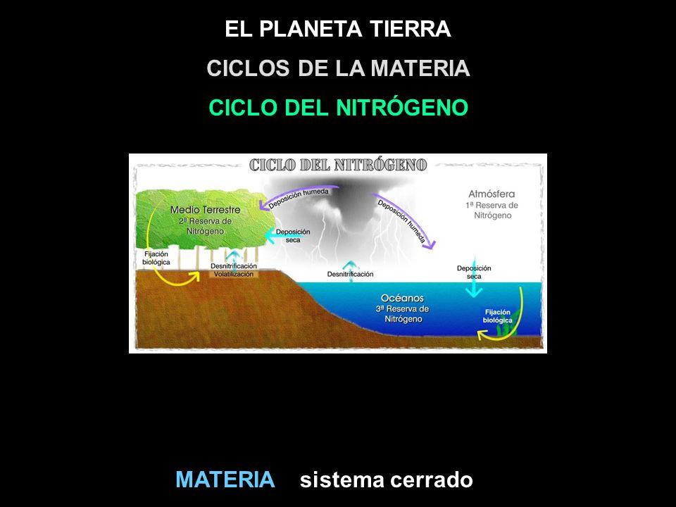 CICLOS DE LA MATERIA CICLO DEL NITRÓGENO MATERIA sistema cerrado