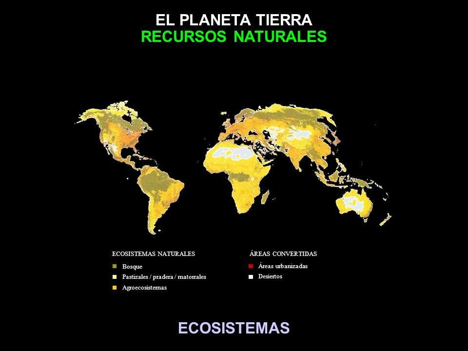 RECURSOS NATURALES ECOSISTEMAS