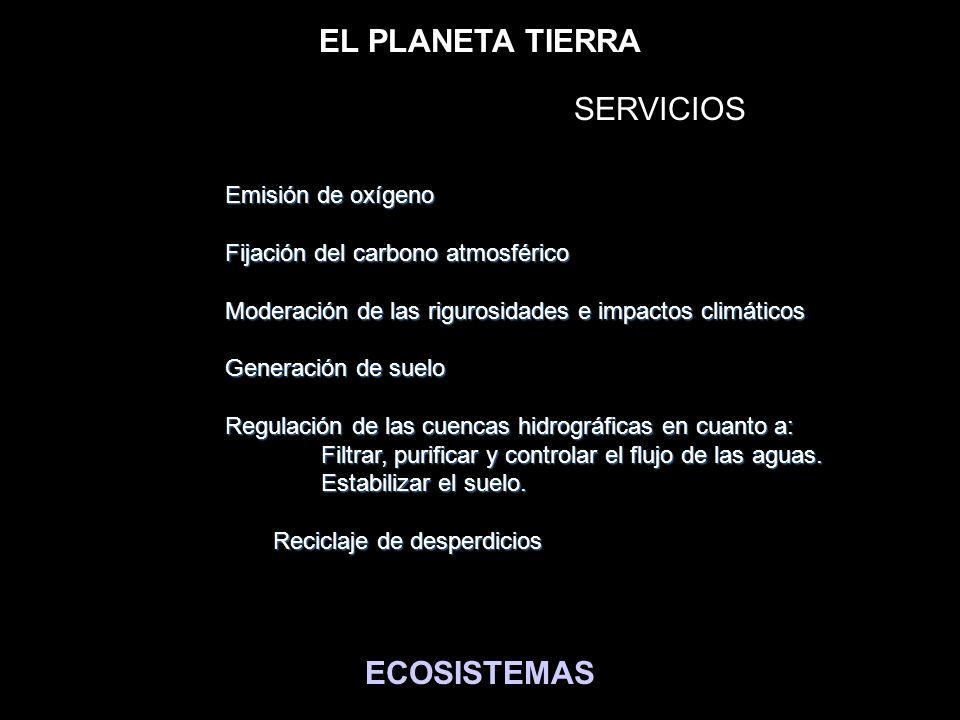 BIENES MATERIALES y SERVICIOS